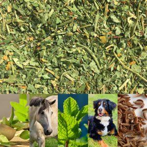 Spezialmischung für Pferde & Hunde