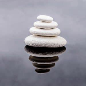 Kieselerde fein gemahlen – getrocknet